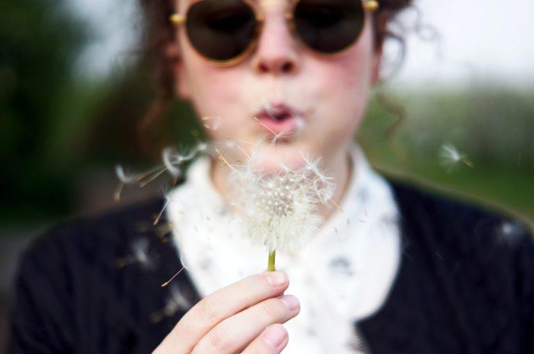 Dandelion Wishes Wellbeing